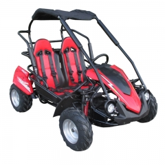 Racing Off Road Buggy For Kids