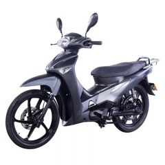 Electric Moped Scooter With Pedal 2000W